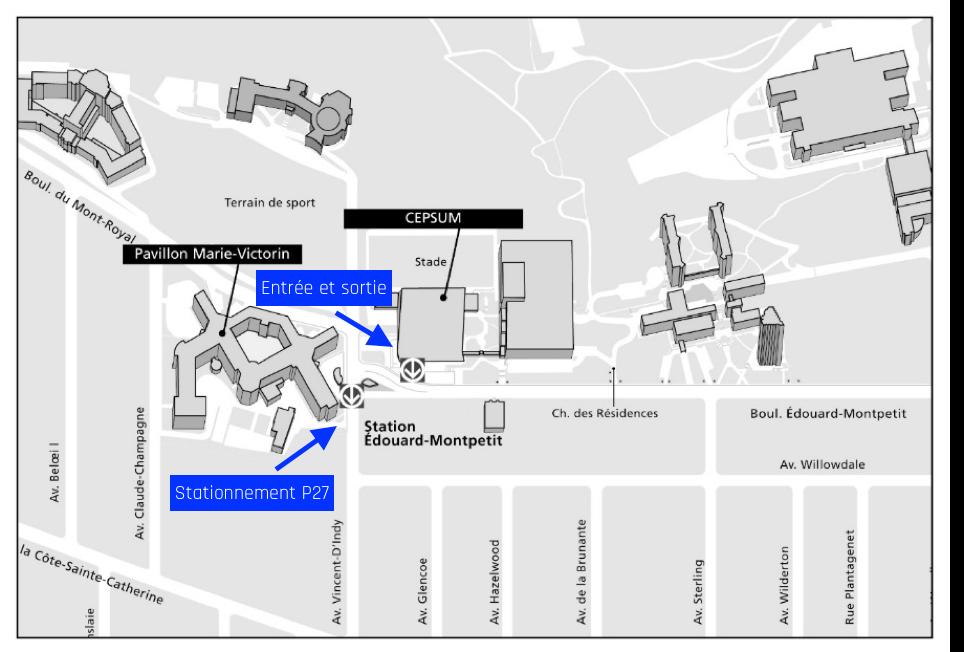 Carte du site du CEPSUM